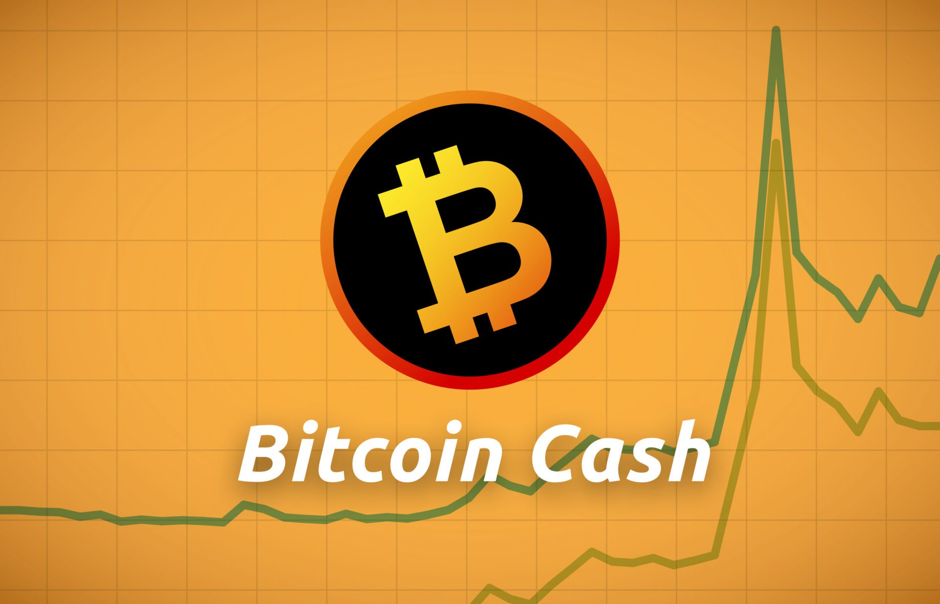 Bitcoin Cash (BCH) Double Digit Gain While Accepted as Payments by Germany Leading Delivery Firms 13