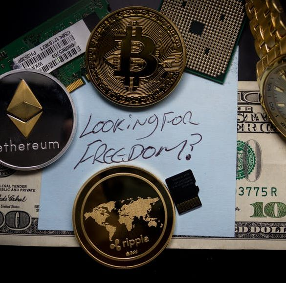 """Early Bitcoin Investor: """"Everybody Should Put Something Into Crypto"""" 14"""