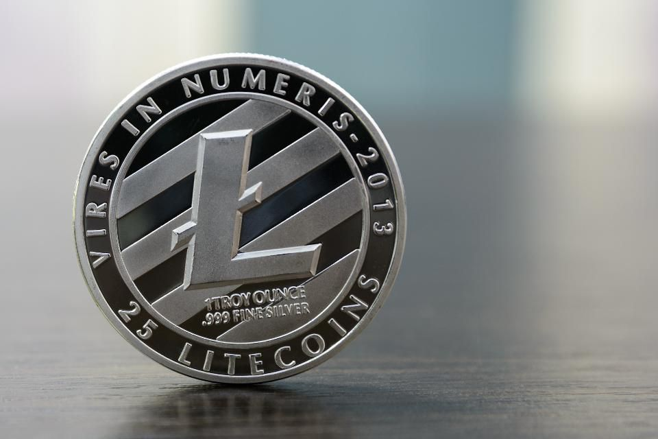 Image result for litecoin
