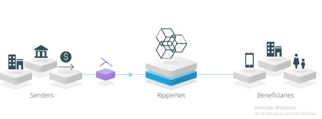 xVia From Ripple (XRP): A Bridge Between RippleNet and ERPs (SAP and Oracle) 13
