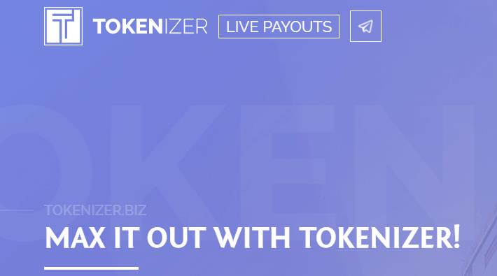Tokenizer: Simplifying ICO Investing To Maximize Your Return On Investment 13