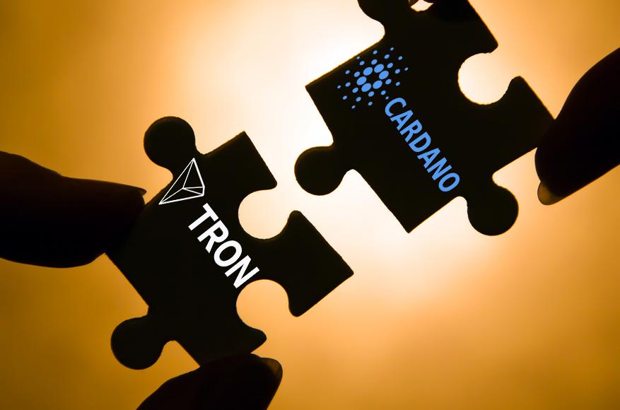 ADA TRX Partnership
