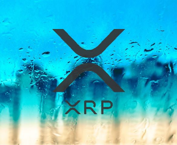 Ripple XRP Token Invest