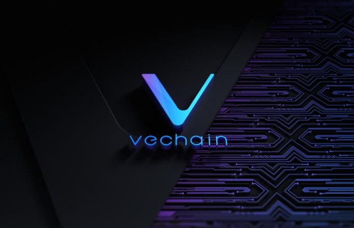 VeChain Blockchain Vet