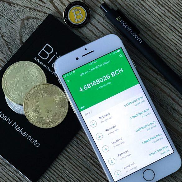 Chainalysis: Bitcoin Cash (BCH) Still Hasn't Achieved Widespread Retail Adoption 14