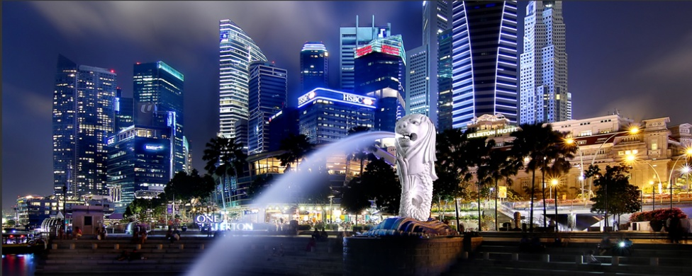 Singapore Determined to Become the First Country to Fully Embrace Cryptocurrencies and DLTs 13
