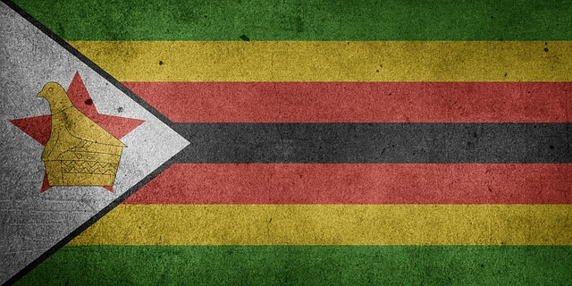 New Finance Chief Calls for Greater Cryptocurrency Investment in Zimbabwe 13