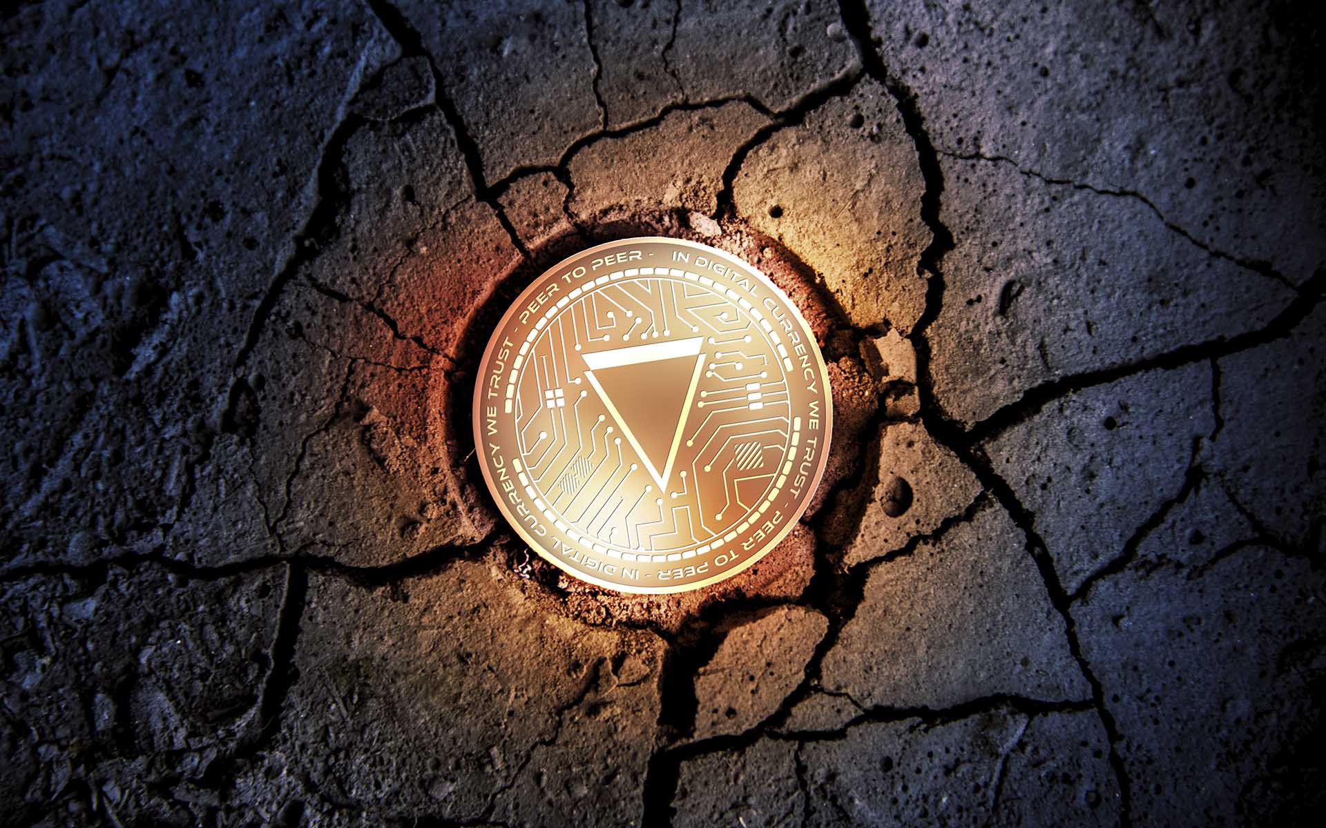 Verge XVG Trading Future Invest