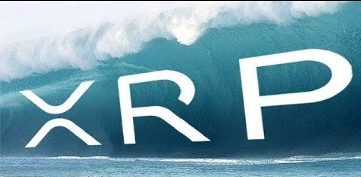 Riding The Tsunami: XRP Survives Two Crashes With A $4 Billion Lead Ahead Of Ethereum 18