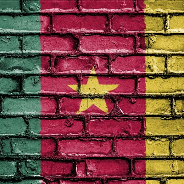 Separatist Movement in Cameroon Promotes an ICO to Support its Cause 14