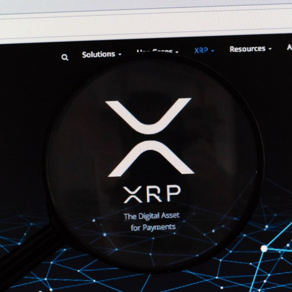 Small Twitter Account Triggers The XRP Army After Posting a Tweet About Ripple CTO Consistently Selling His XRP Stash 13