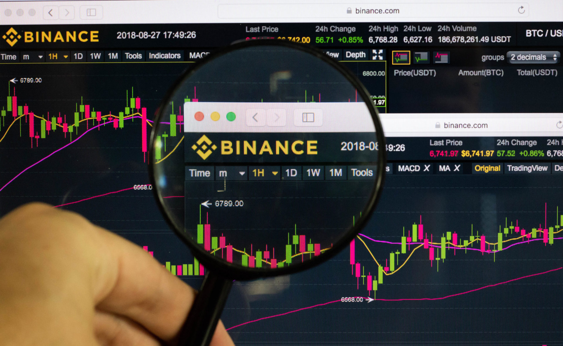 Venture Investor: Binance is Systemically Important To Crypto 13