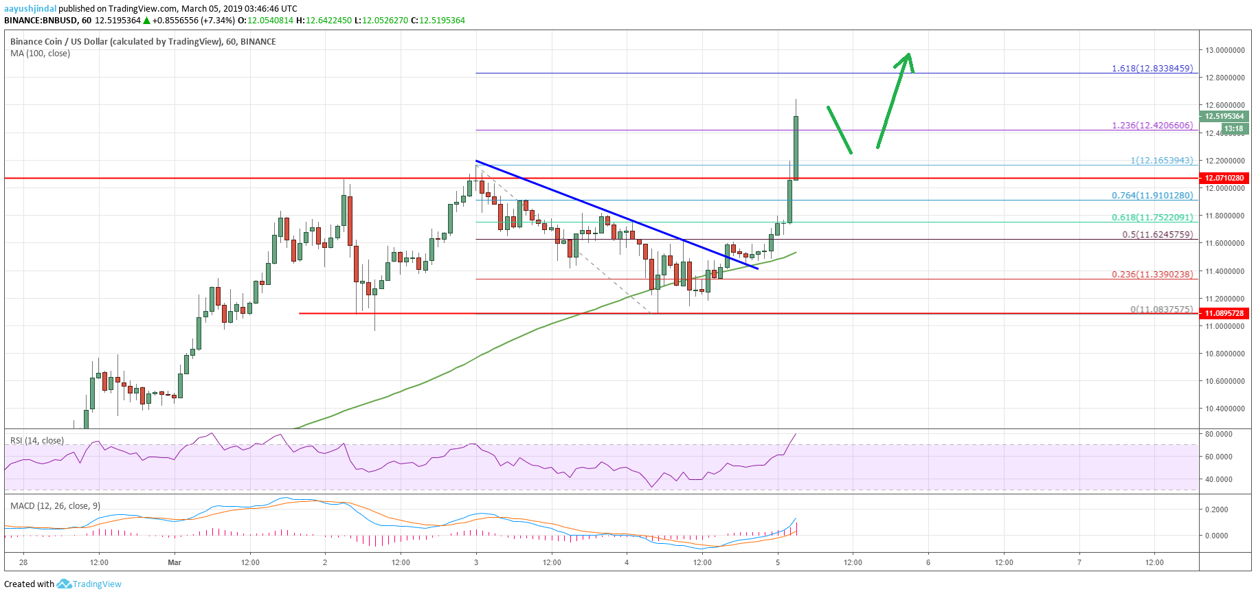 Binance Coin (BNB) Surging Above $12 Whereas BTC and ETH Tumble
