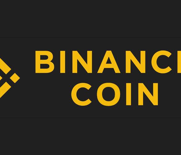 Binance Coin BNB 300 Percent 2019