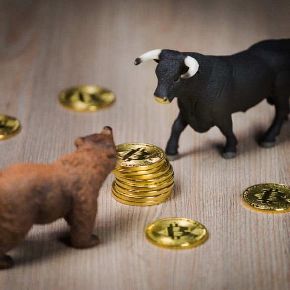 Technical Indicator Signals That The Bitcoin (BTC) Bear Market May Be Over, But What Comes Next? 13