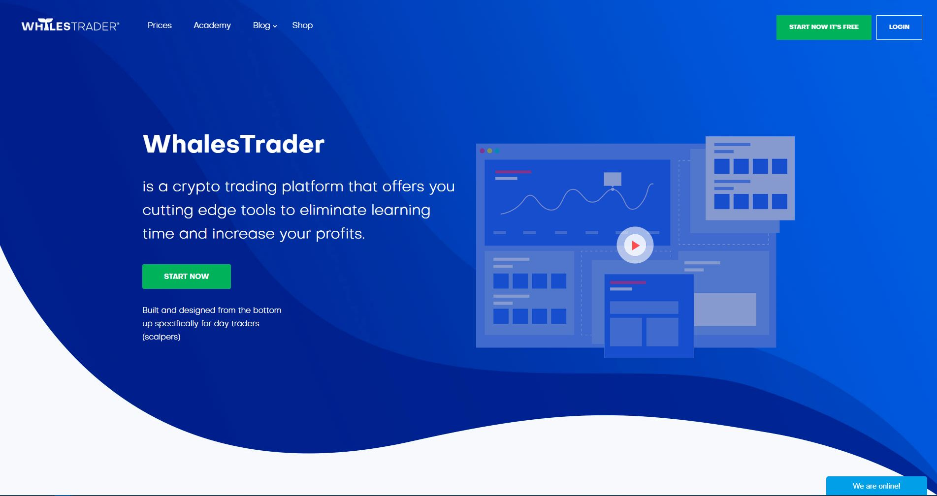 WhalesTrader: How Does This Platform Help Crypto Traders? 13